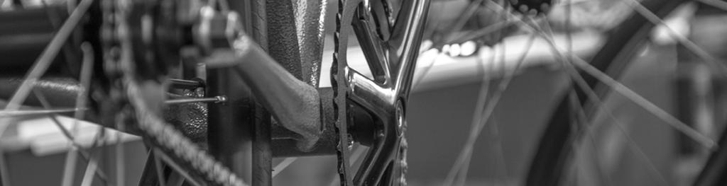 Tessa fotografeert een fiets